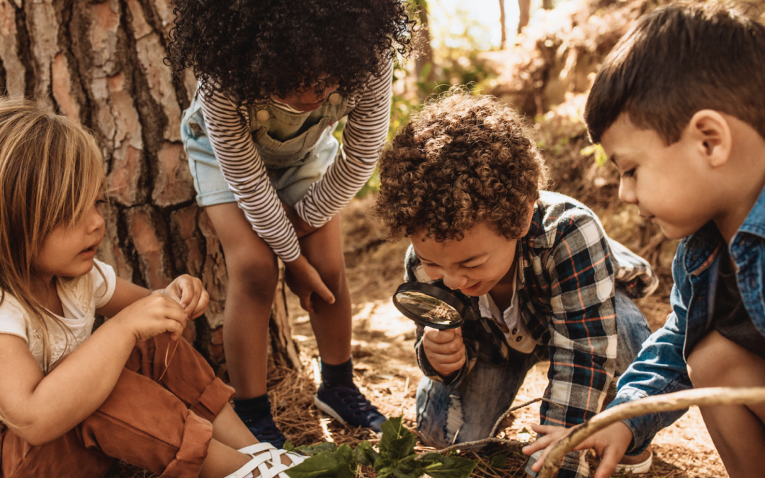 Report | Funding for Outdoor Play in Canada