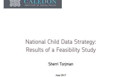 National Child Data Strategy: Results of a Feasibility Study